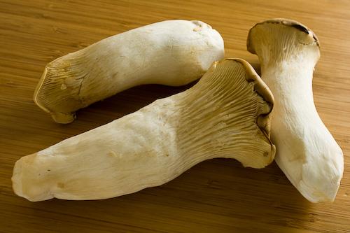 king-oyster-mushrooms-b