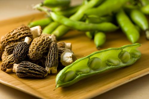 morel-mushroom-fava-beans-2