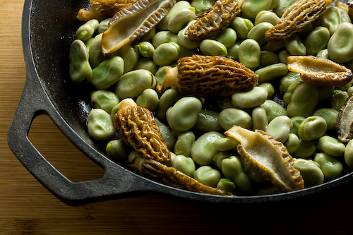 morel-mushroom-fava-beans-recipe-1
