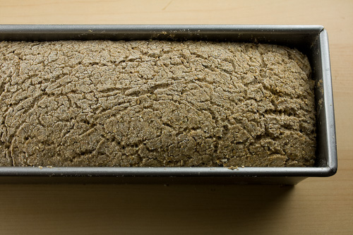 vollkornbrot-german-whole-rye-proof-iii